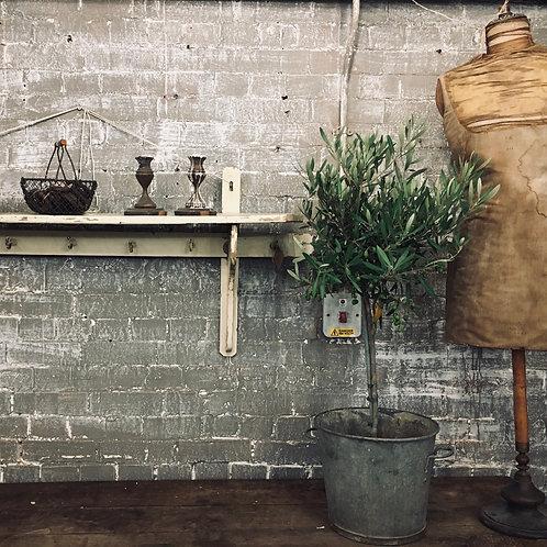 Shelf and hooks