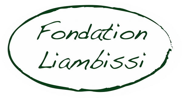 cropped-logo-fondation-liambissi_fond-bl