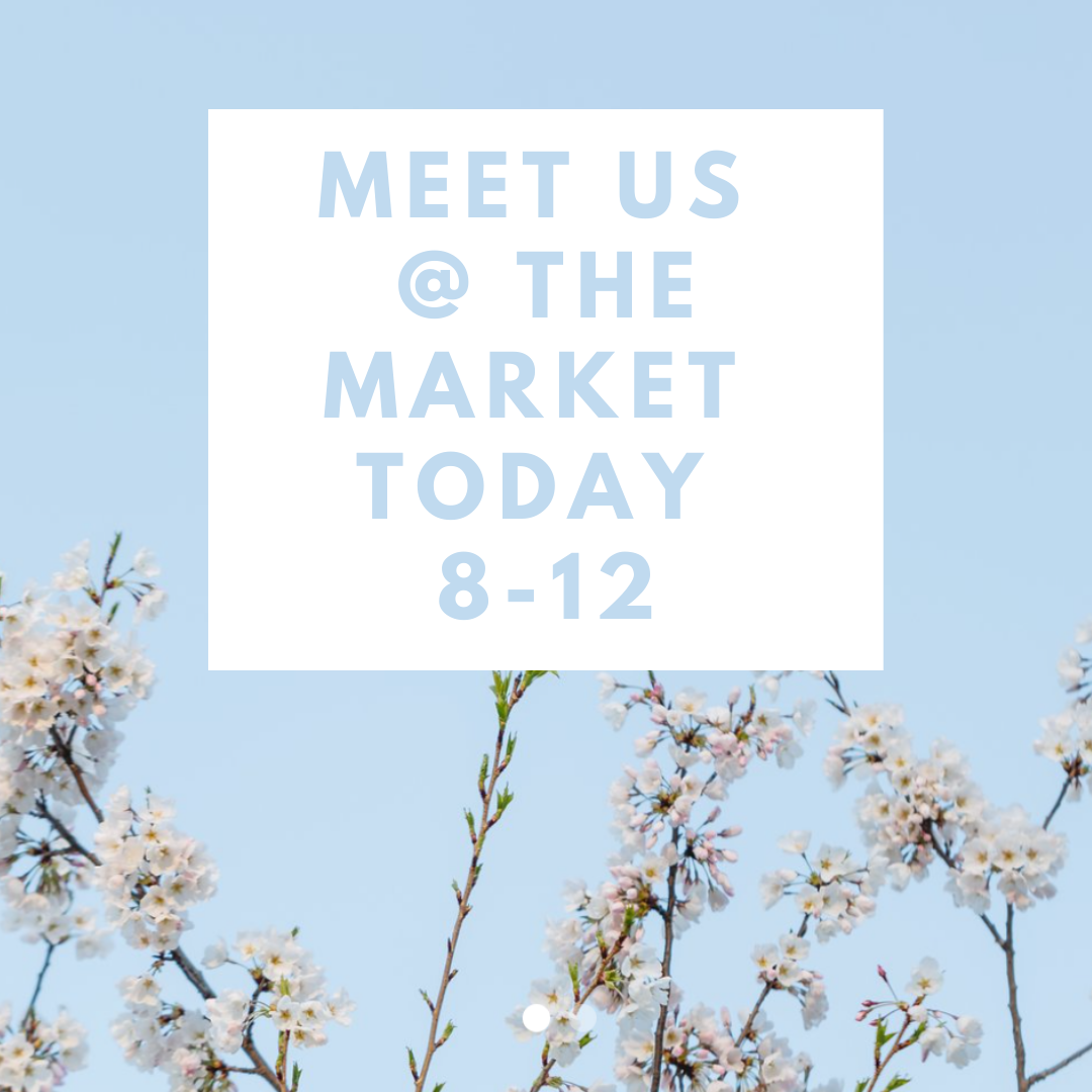 Meet Us @ the market today 8-12