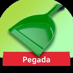 icon-pegada.png