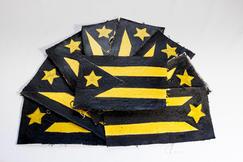 Pa'lante Flag