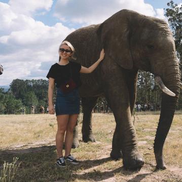 Wildlife in Southafrica.  © Julia Schiff