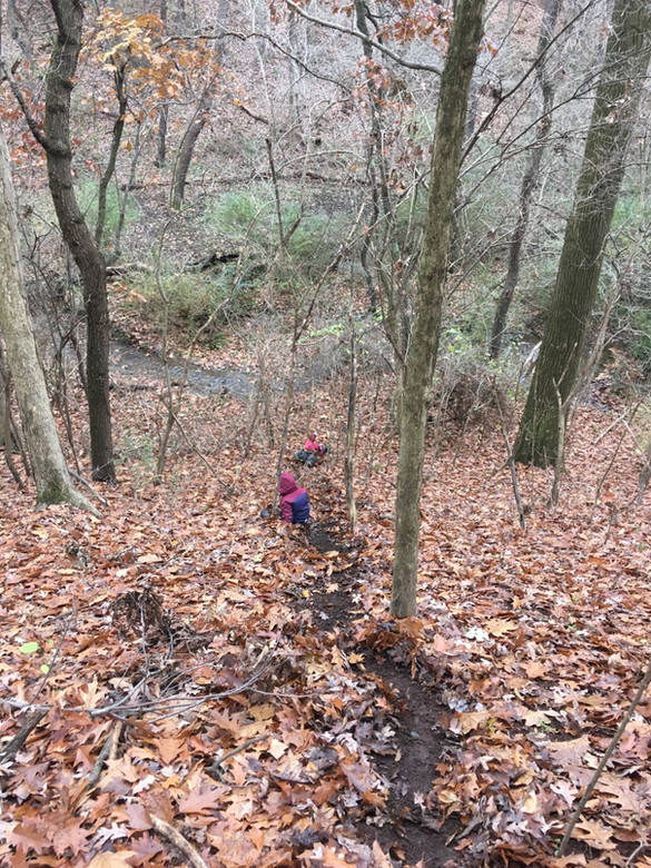 sliding down hill in fall.jpg