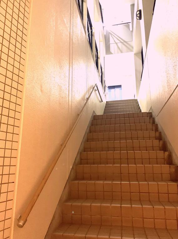入口までの階段