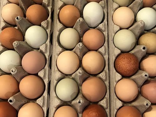 Egg Delivery Subscription - 1 dozen per week for 4 weeks
