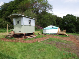 dandelion hill yurt