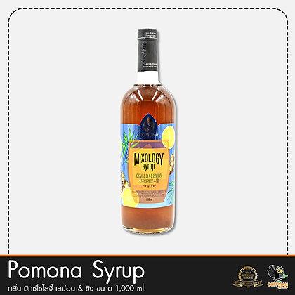 Pomona ไซรัปกลิ่น มิกซ์โซโลจี้ เลม่อน & ขิง Mixology Ginger and Lemon Syrup