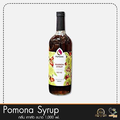 Pomona ไซรัปกลิ่น เกาลัด Marron Syrup