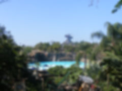 Typhoon Lagoon Main.jpg
