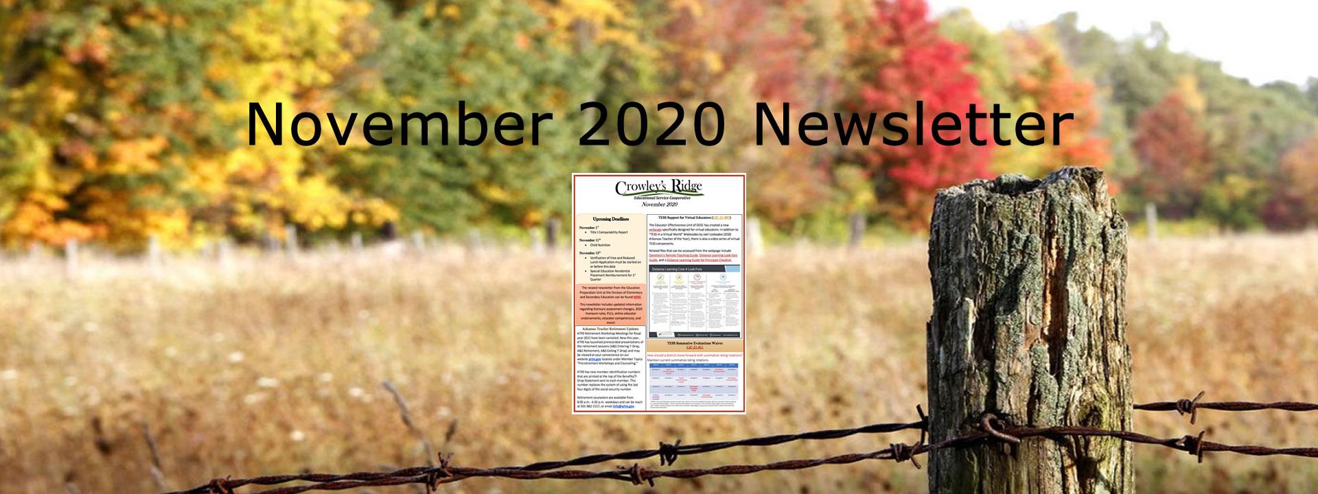 November2020 Newsletter