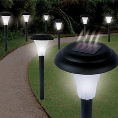 Home > Lighting > Solar Lighting > Set of 16 - Solar Powered LED Accent Light