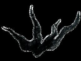 capoeira kanô logo