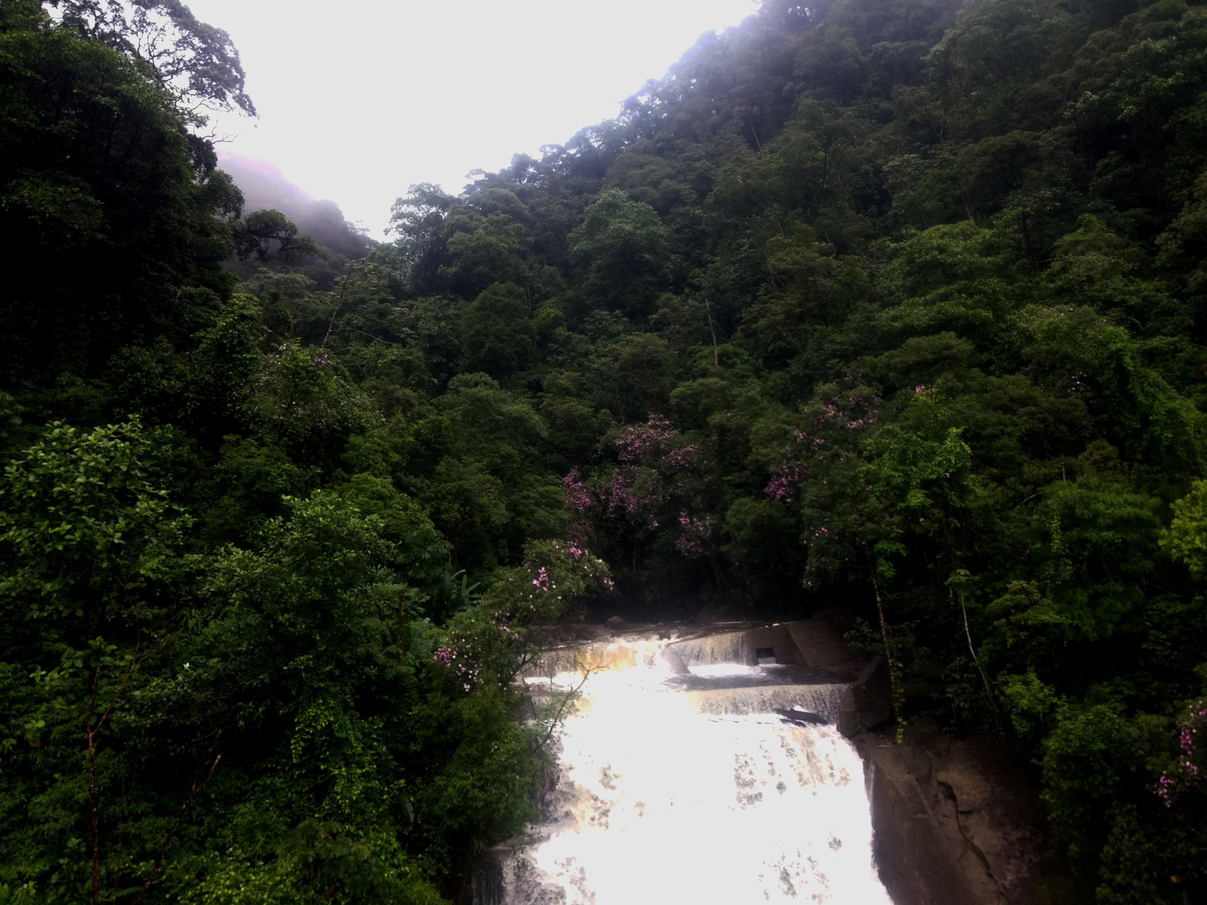 Serra do Mar - Via Anchieta