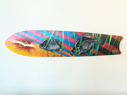 Minnesota Phish Long Board