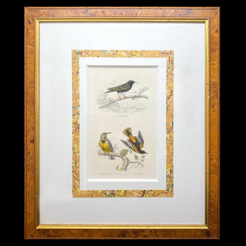 アンティーク プリント画のご紹介|英国アンティークの絵画なら鎌倉アンティークス