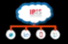 IBIS Plan New.png