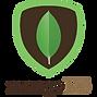 MongoDB logo PNG.png