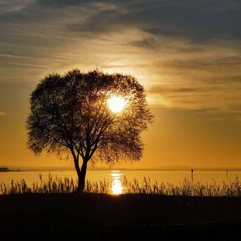 Sonnenuntergang am Rohrspitz