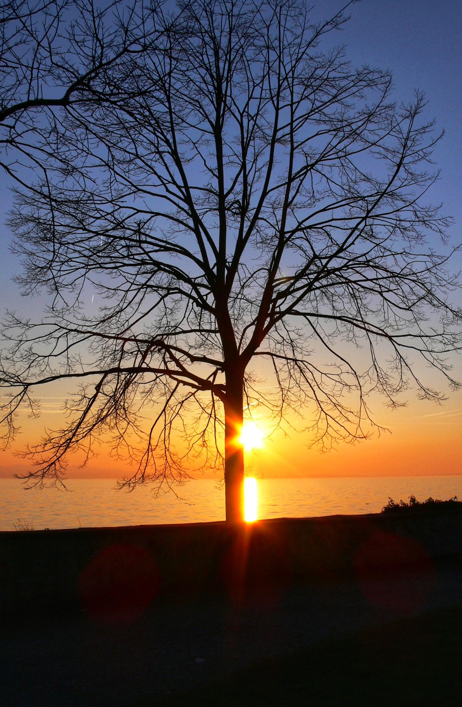 Sonnenuntergansstimmung in Lindau
