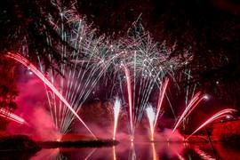 191105_Lions_Fireworks-0936.jpg