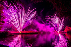 191105_Lions_Fireworks-0883.jpg
