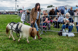 170624-Kelsall Steam Rally-1222