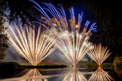 191105_Lions_Fireworks-0877.jpg
