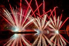 191105_Lions_Fireworks-0922.jpg