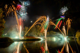 191105_Lions_Fireworks-0913.jpg