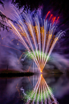 191105_Lions_Fireworks-0930.jpg