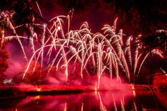 191105_Lions_Fireworks-0900.jpg