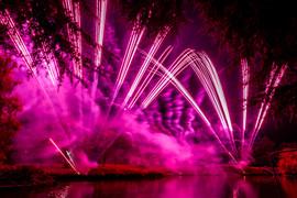 191105_Lions_Fireworks-0884.jpg