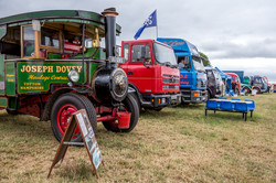 170624-Kelsall Steam Rally-1293