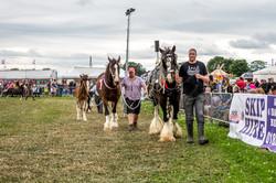 170624-Kelsall Steam Rally-1596