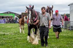 170624-Kelsall Steam Rally-1145