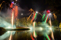 191105_Lions_Fireworks-0914.jpg