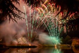 191105_Lions_Fireworks-0931.jpg