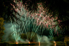 191105_Lions_Fireworks-0934.jpg