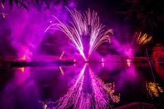 191105_Lions_Fireworks-0905.jpg