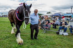 170624-Kelsall Steam Rally-1215