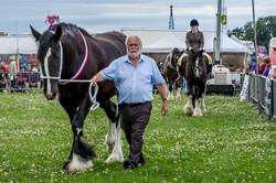 170624-Kelsall Steam Rally-1198