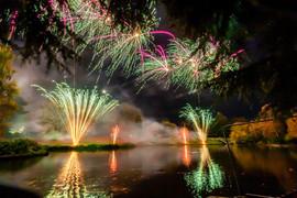 191105_Lions_Fireworks-0889.jpg