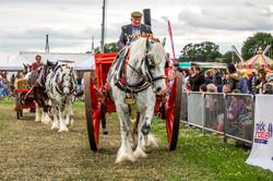 170624-Kelsall Steam Rally-1593