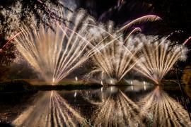 191105_Lions_Fireworks-0928.jpg