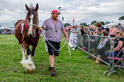 170624-Kelsall Steam Rally-1220