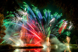 191105_Lions_Fireworks-0915.jpg