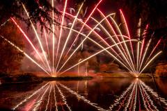 191105_Lions_Fireworks-0908.jpg