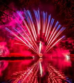 191105_Lions_Fireworks-0916.jpg