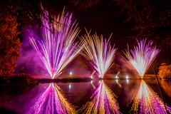 191105_Lions_Fireworks-0925.jpg