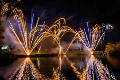 191105_Lions_Fireworks-0893.jpg